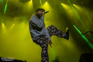 Limp Bizkit - Photo by Marc